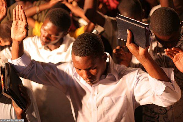 Haiti24.2.10pm_13.JPG (Large)
